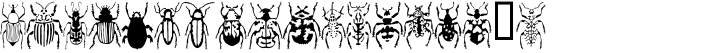 Stan's Rhadamanthus's Beetles Regular