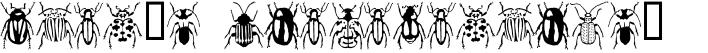 Stan's Rhadamanthus's Beetles