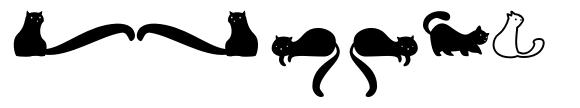Kitten Dingcats