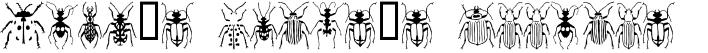 Stan's Polus's Beetles