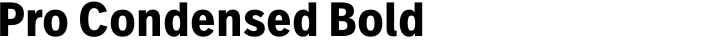 FF Real Text Pro Condensed Bold