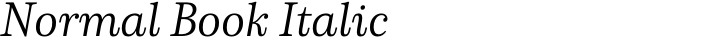 Schorel Normal Book Italic