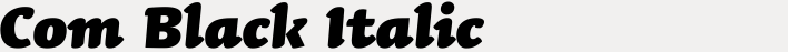 Linotype Syntax Letter Com Black Italic