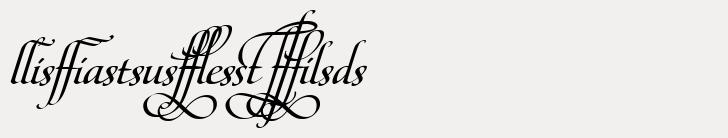 Maestro Ligatures Bold