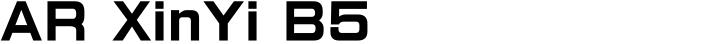AR XinYi B5