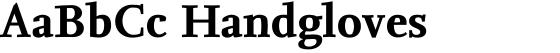 FF Nexus Serif Bold